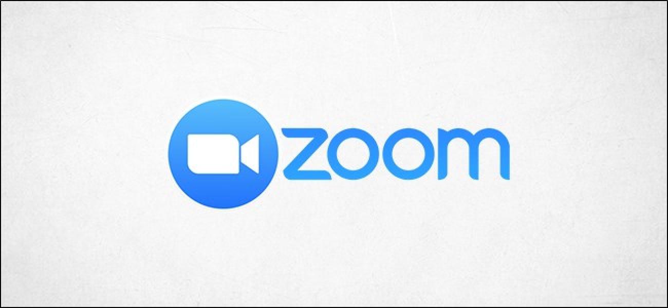 zoom-logo-fixed